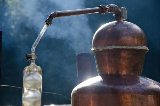huiles essentielles, hydrolats, biolgogiques, suisses